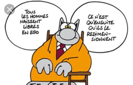 geluck ego adulte therapie