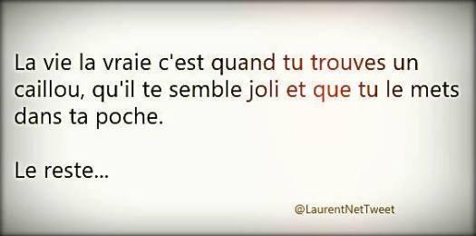 La-vie-et-le-joli-caillou-sapho-pellaé-kinesiologue-marseille